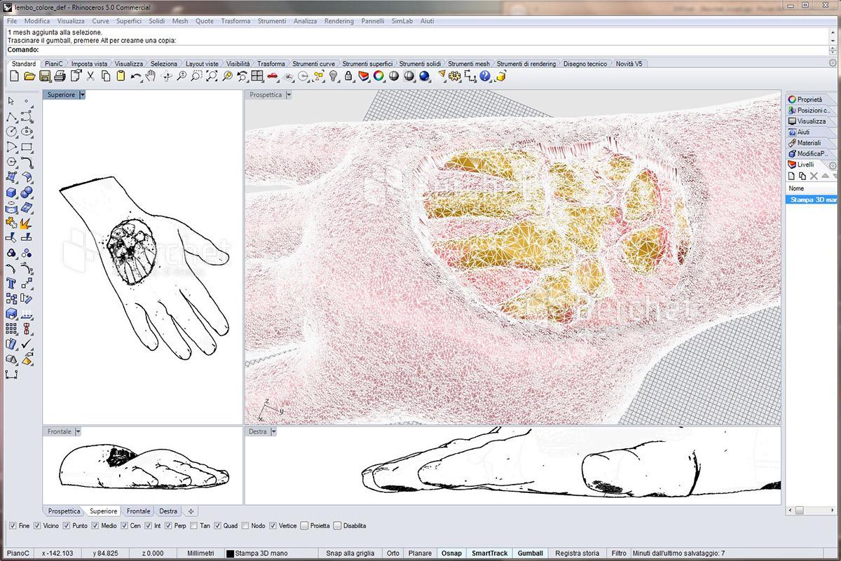 Schermata del software di elaborazione del file 3D.